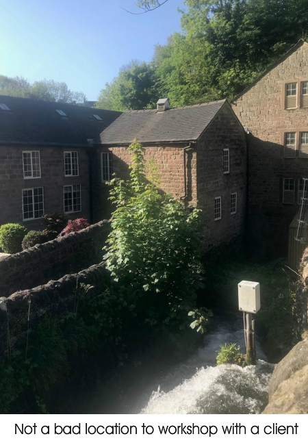 An image of a back lane and surrounding houses.